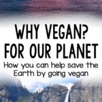 Why Vegan? For our Planet