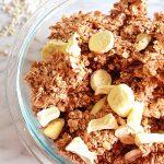 Vegan Nut Free Tropical Granola